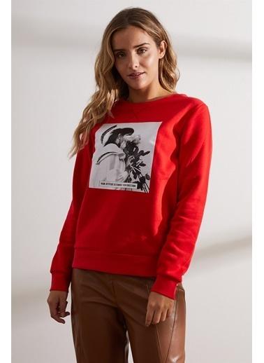 Setre Antrasit Önü Baskılı Uzun Kol Sweatshirt Kırmızı